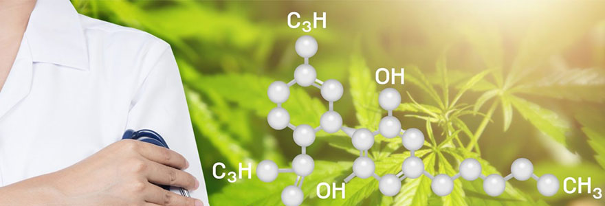 Le cannabidiol se tourne vers le medical