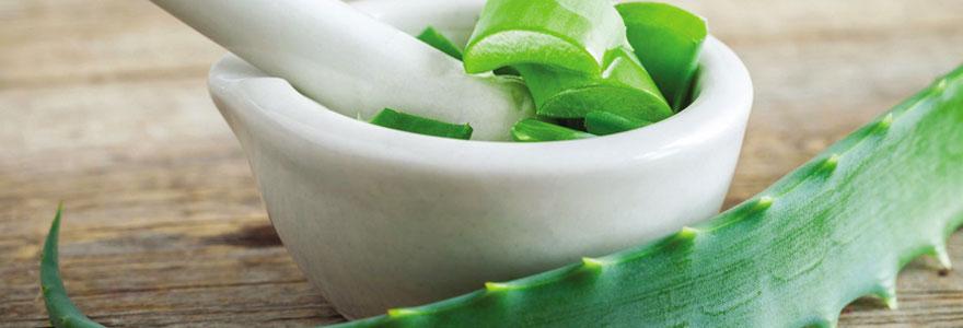 Produits Aloe vera